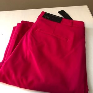 Brand New Banana Republic Size 10 Long Ryan Pant